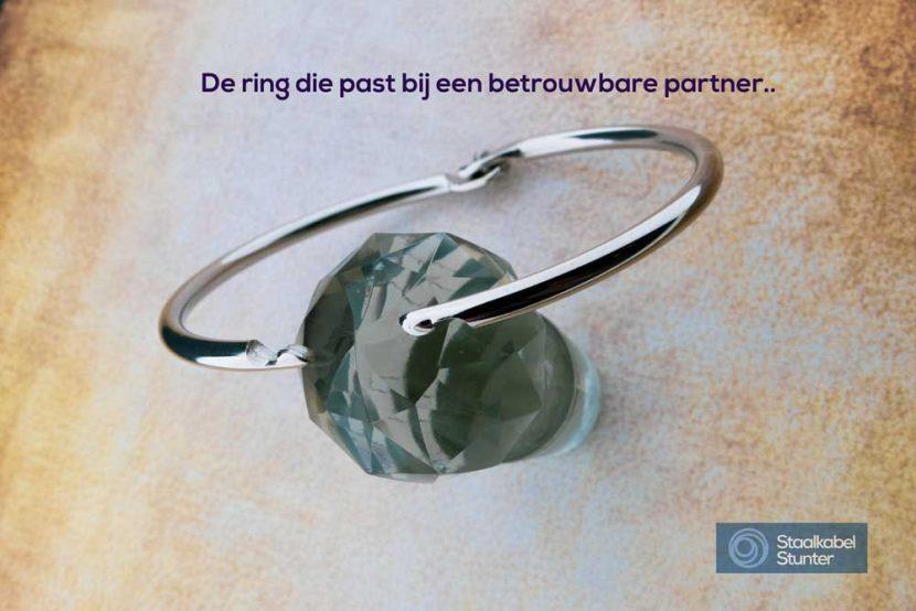 Scharnierende ring